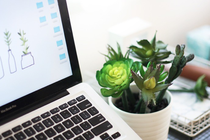 Image result for succulent on desk
