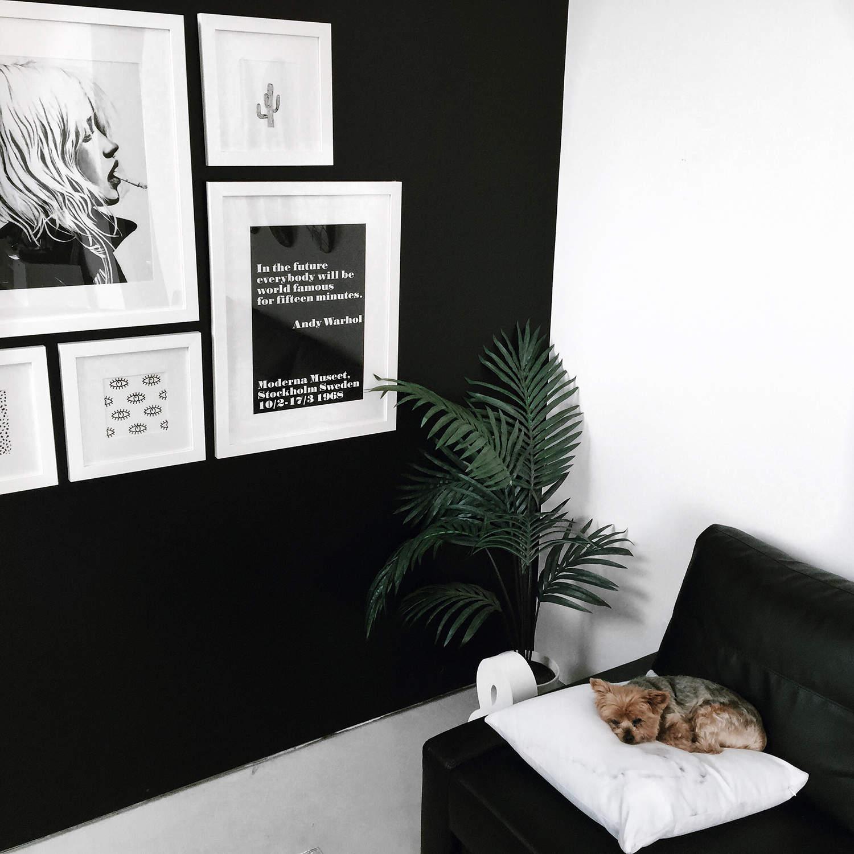 fashionlush, minimal decor, black & White
